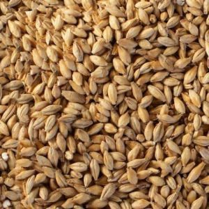 Crystal - Pale Malt