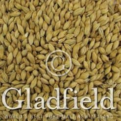 American Ale Malt - Gladfield